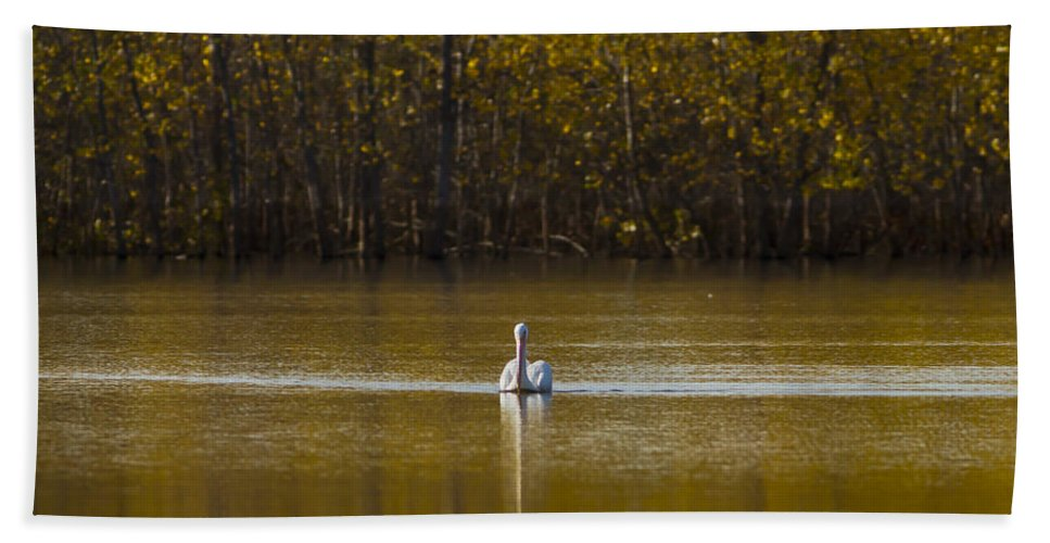 Pond Bath Sheet featuring the photograph Pelican On Golden Pond by Pam Holdsworth