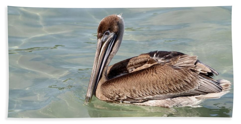 Pelican Bath Sheet featuring the photograph Pelican Waiting For A Catch by Sabrina L Ryan