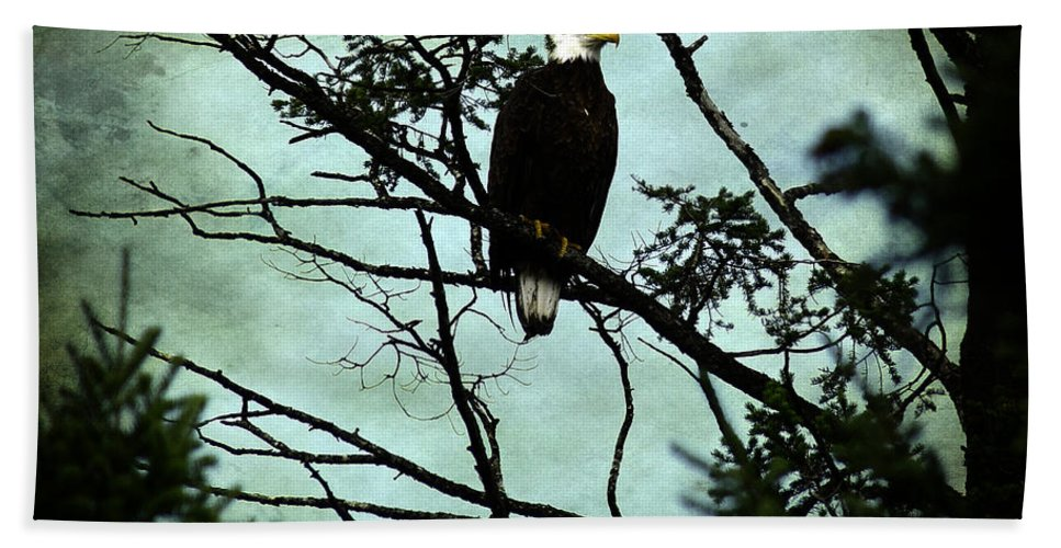Eagle Bath Sheet featuring the photograph Perched Raptor by The Artist Project