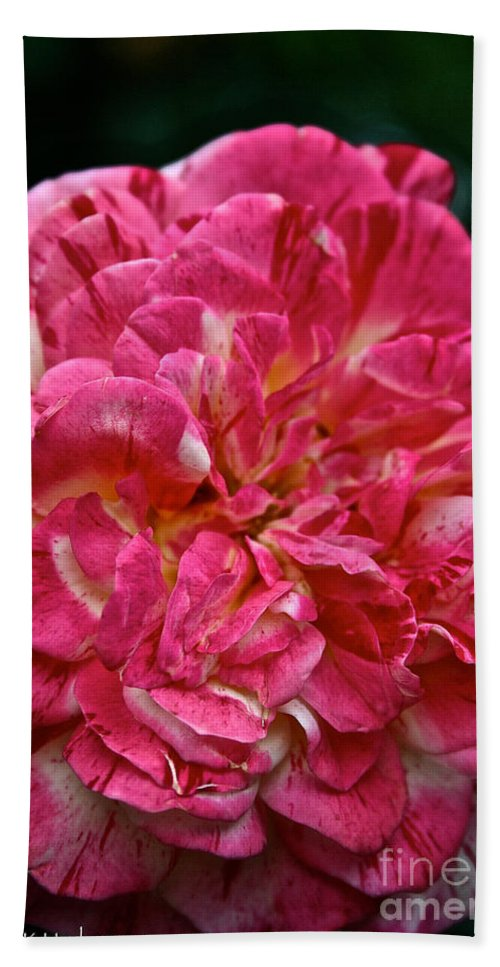 Garden Bath Sheet featuring the photograph Petals Petals And More Petals by Susan Herber