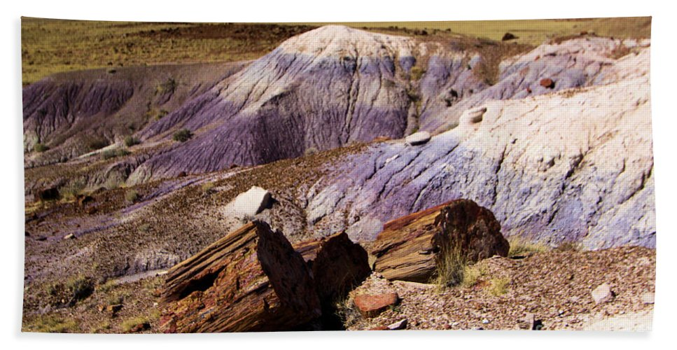 Petrified Forest National Park Bath Sheet featuring the photograph Petrified Logs In The Badlands by Adam Jewell