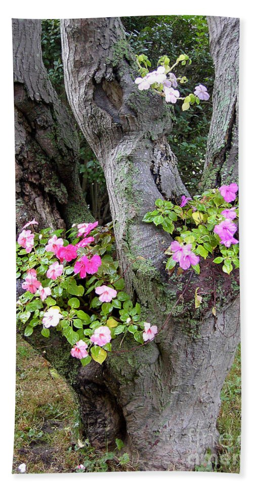 Petunia Bath Sheet featuring the photograph Petunia Tree by Mike Nellums