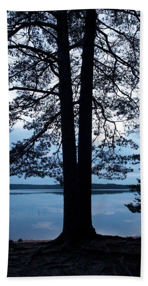 Jouko Lehto Bath Sheet featuring the photograph Pine Silhuette by Jouko Lehto