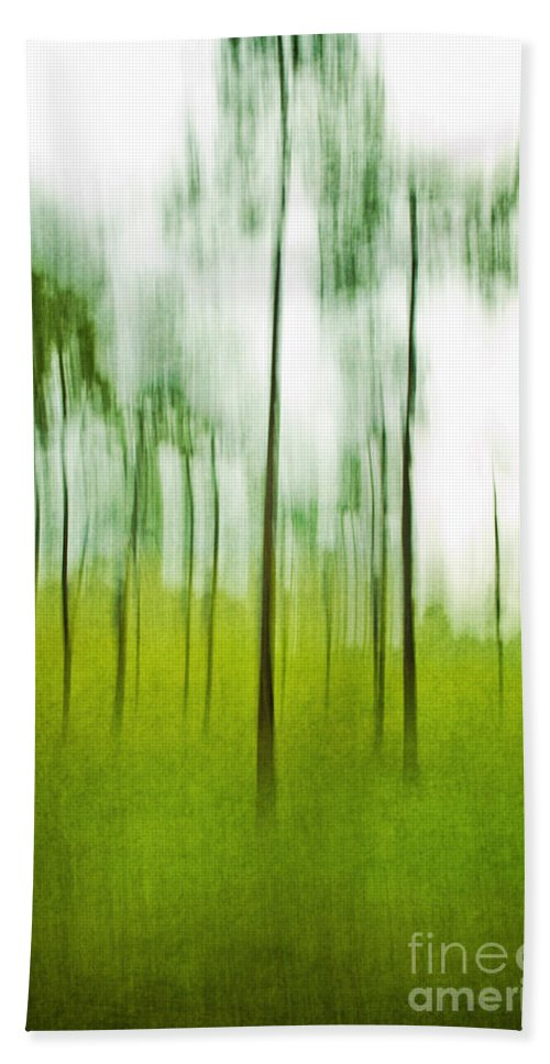 Trees Hand Towel featuring the photograph Pines by Scott Pellegrin