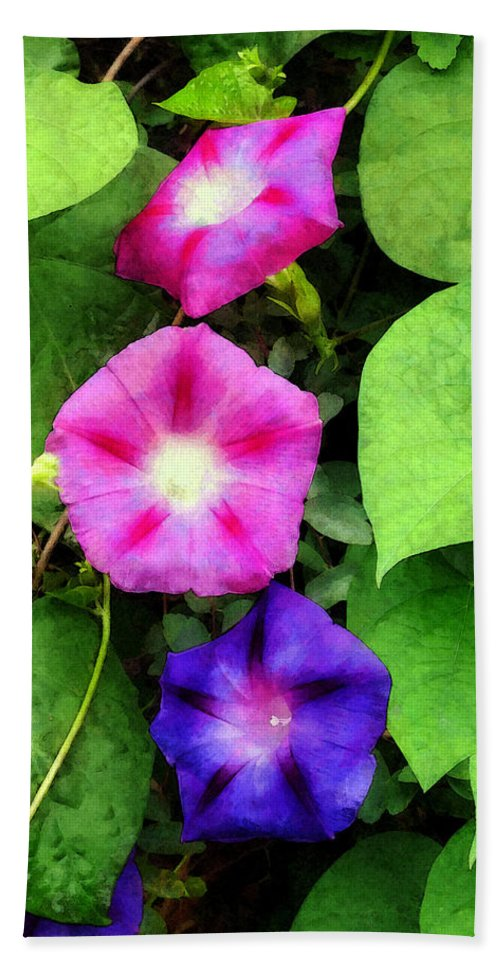 Morning Glory Bath Sheet featuring the photograph Pink And Purple Morning Glories by Susan Savad
