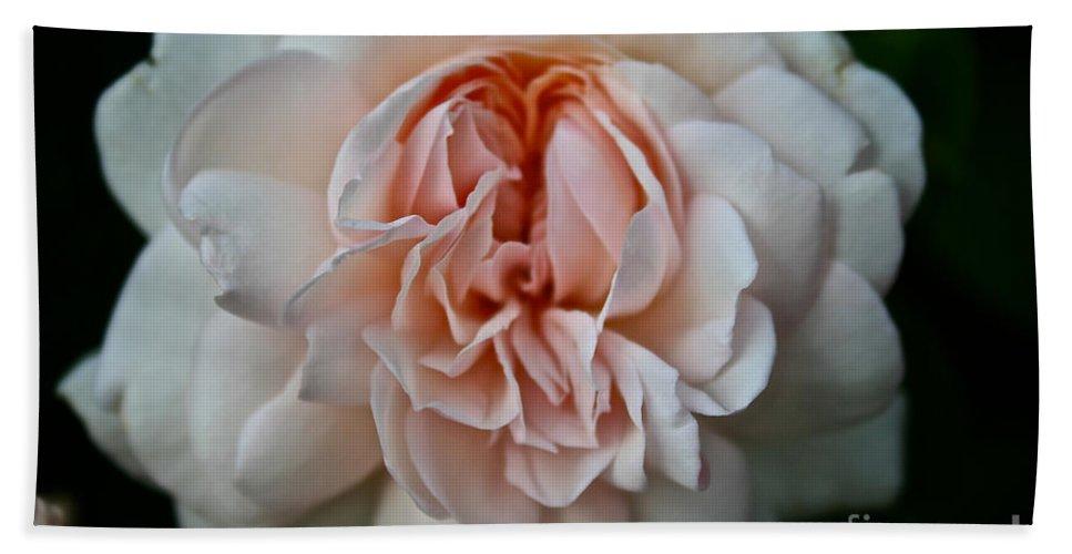 Garden Bath Sheet featuring the photograph Pink Angel by Susan Herber