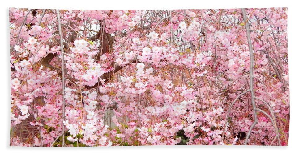 Spring Hand Towel featuring the photograph Pink Blossoms by Carol Groenen