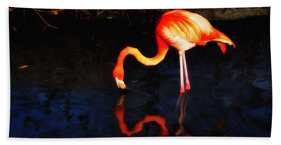 Pink Flamingo Bath Sheet featuring the photograph Pink Flamingo by Bill Cannon
