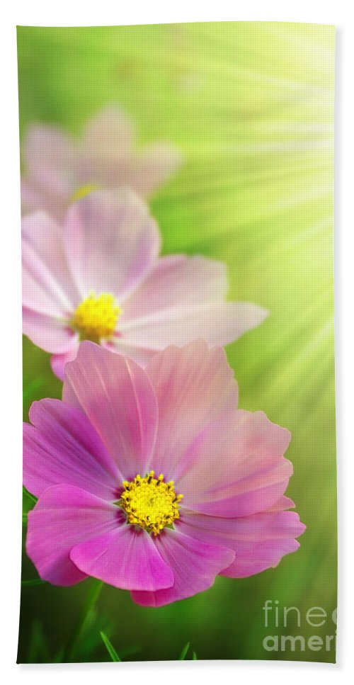 Agriculture Bath Sheet featuring the photograph Pink Spring by Carlos Caetano
