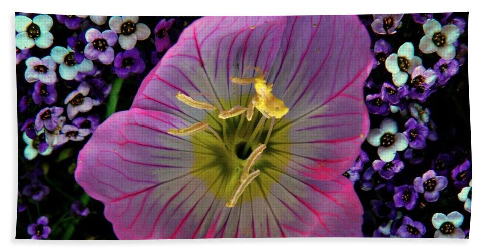Botanical Bath Sheet featuring the photograph Pink Wildflower by Chris Berry