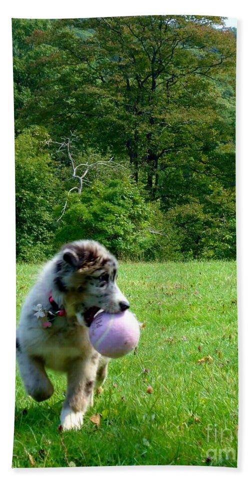 Puppy Hand Towel featuring the photograph Play Ball by Art Dingo