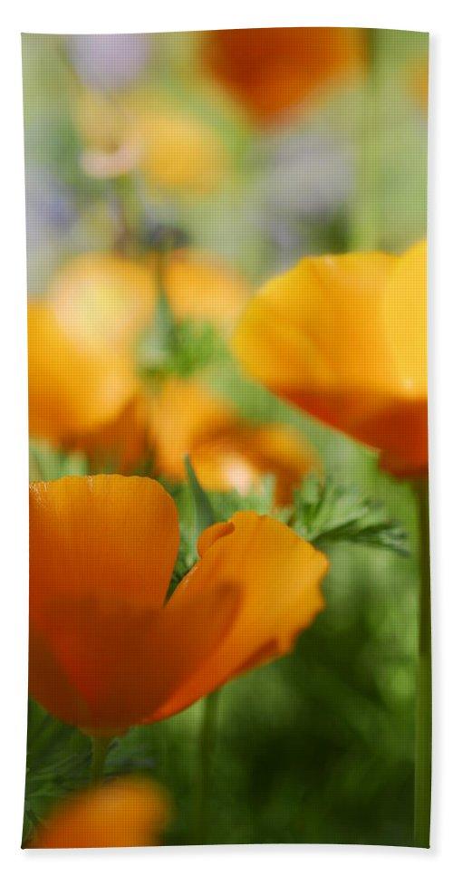Mexican Poppies Bath Sheet featuring the photograph Poppies by Saija Lehtonen