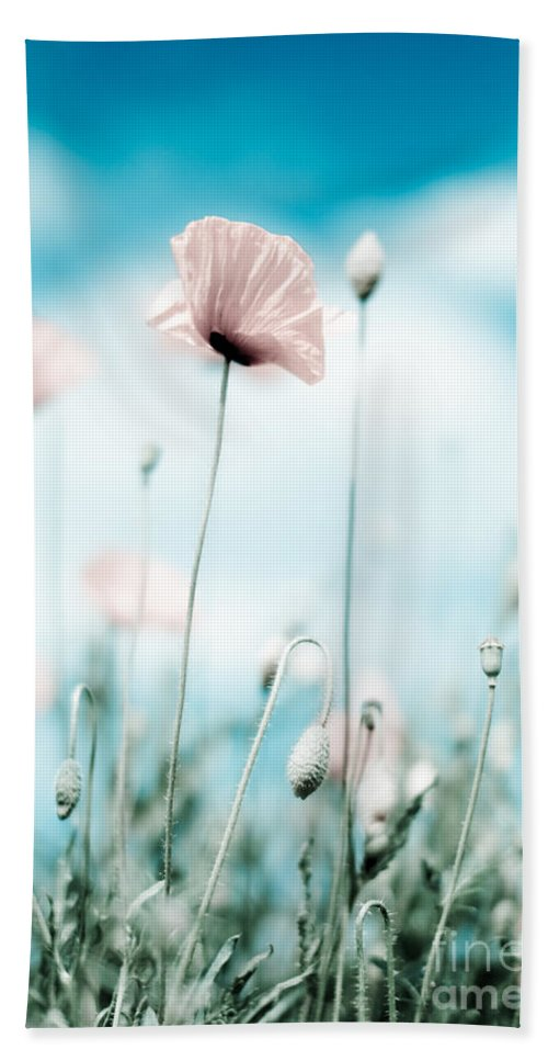 Poppy Bath Towel featuring the photograph Poppy Flowers 13 by Nailia Schwarz