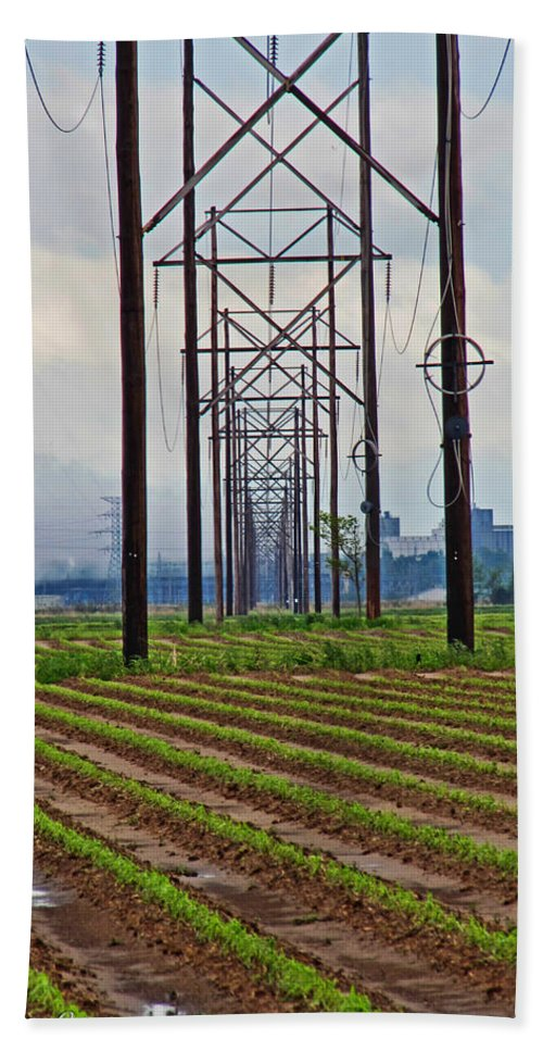 Industry Bath Sheet featuring the photograph Power And Plants II by Debbie Portwood