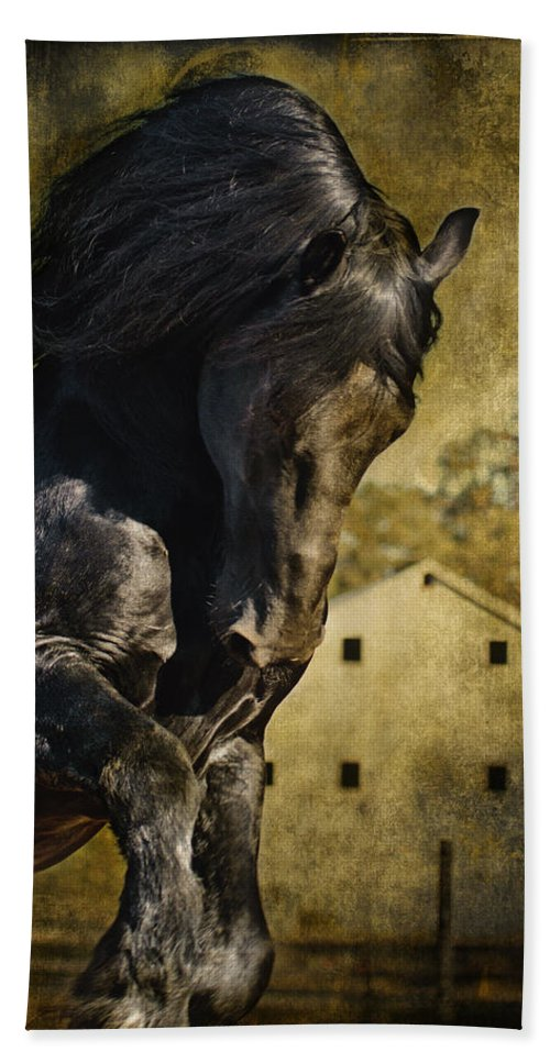 Power House Horse Hand Towel featuring the photograph Power House Horse by Wes and Dotty Weber