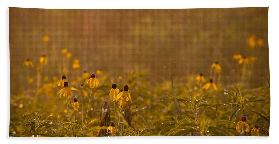 Prairie Bath Sheet featuring the photograph Prairie Wildflowers by Steve Gadomski