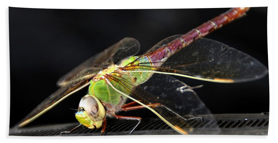 Fine Art Photography Hand Towel featuring the photograph Praying Dragon by David Lee Thompson