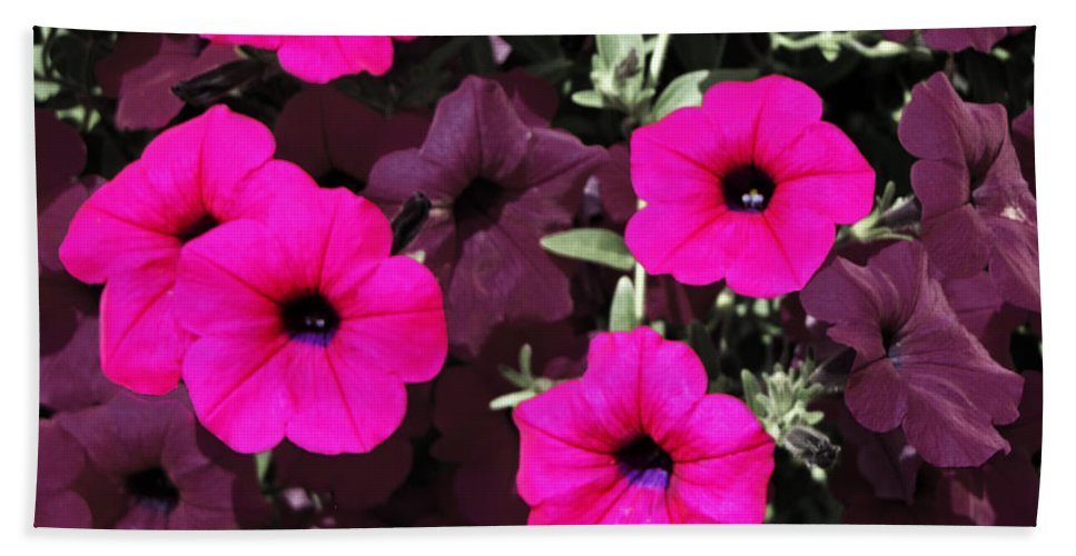 Flower Hand Towel featuring the photograph Pretty Pink by Ms Judi