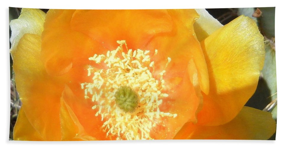 Prickly Hand Towel featuring the photograph Prickly Pear Cactus Flower by Kume Bryant