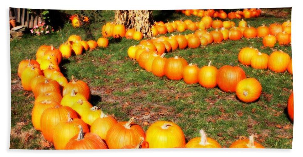 Pumpkin Bath Sheet featuring the photograph Pumpkin Patch Path by Carol Groenen