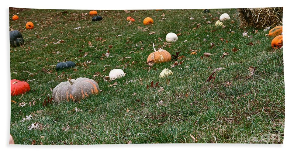 Outdoors Hand Towel featuring the photograph Pumpkins by Susan Herber