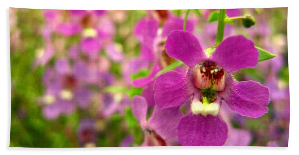 Flowers Bath Sheet featuring the photograph Purple Field by Rhonda Barrett