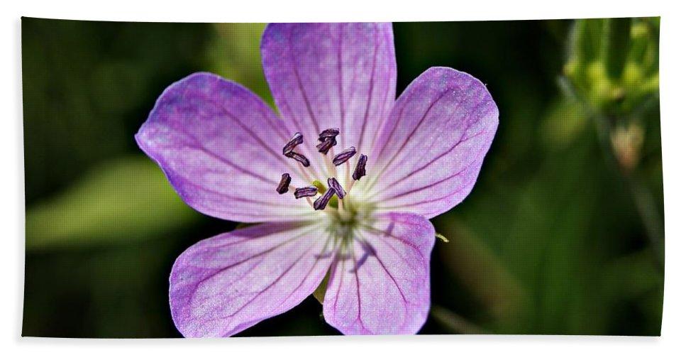 Purple Bath Sheet featuring the photograph Purple Flower 1 by Joe Faherty