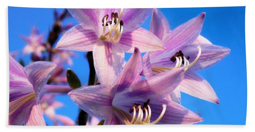 Purple Bath Sheet featuring the photograph Purple Hosta Blooms by Davandra Cribbie