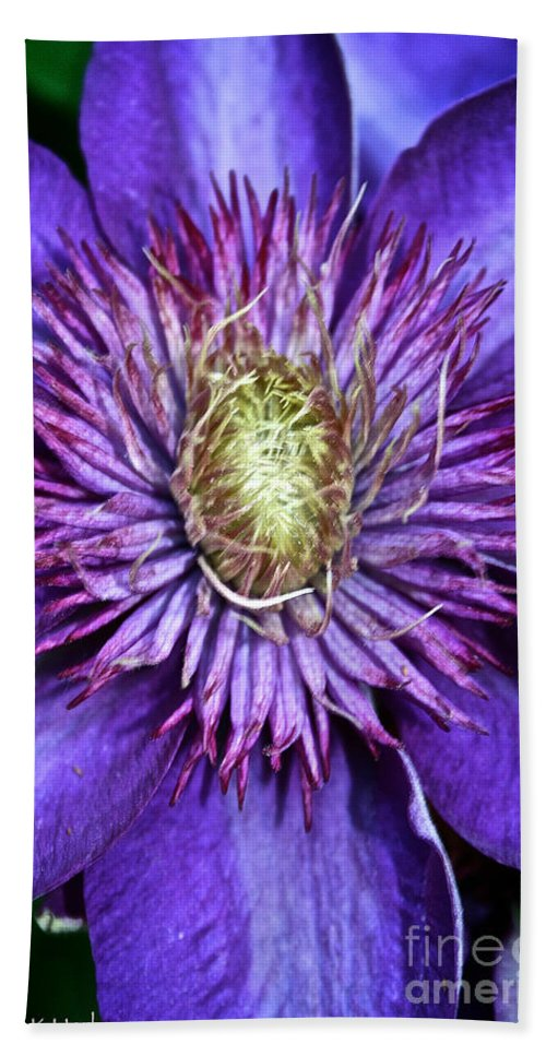 Plant Bath Sheet featuring the photograph Purple Star by Susan Herber