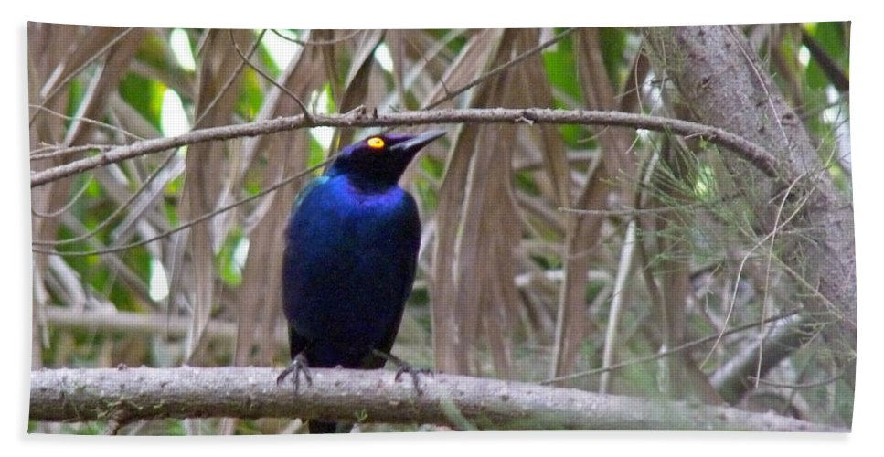 Starling Hand Towel featuring the photograph Purple Starling by Tony Murtagh