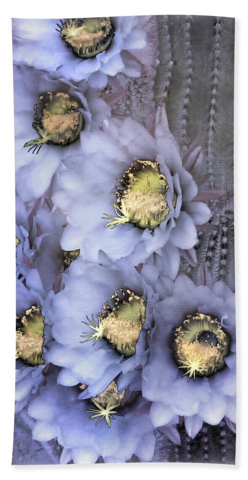Cactus Hand Towel featuring the photograph Purple Torch by Linda Dunn