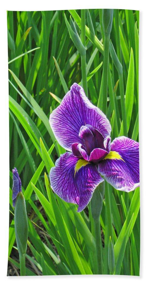 Purple Water Iris Hand Towel featuring the photograph Purple Water Iris by Greg Matchick