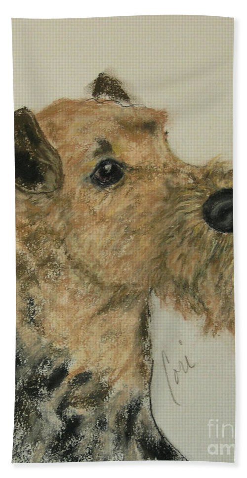 Airedale Hand Towel featuring the drawing Putting On Aires by Cori Solomon