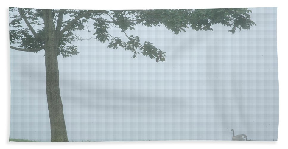 Fog Hand Towel featuring the photograph Quiet Fog Rolling In by Karol Livote