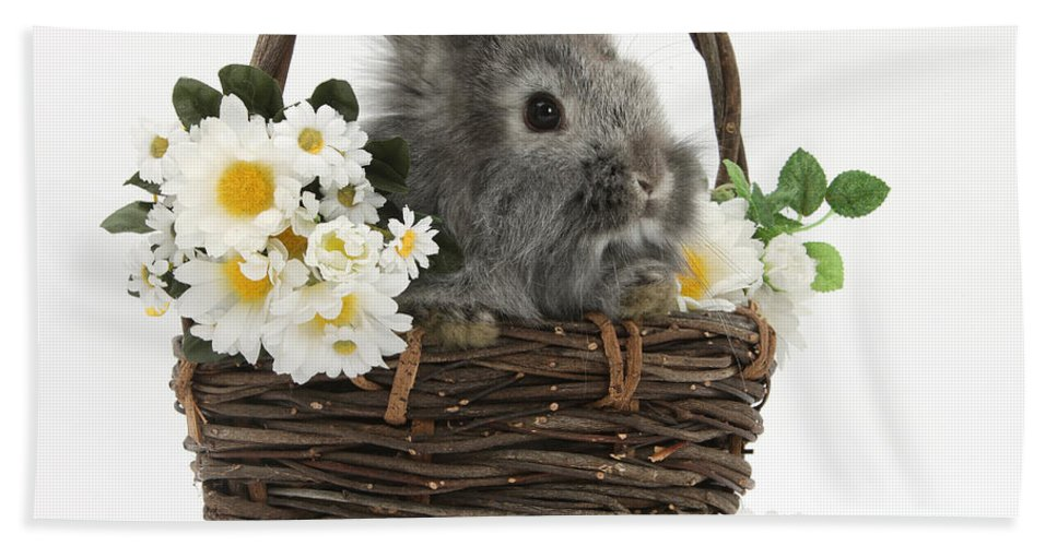Nature Hand Towel featuring the photograph Rabbit In A Basket With Flowers by Mark Taylor