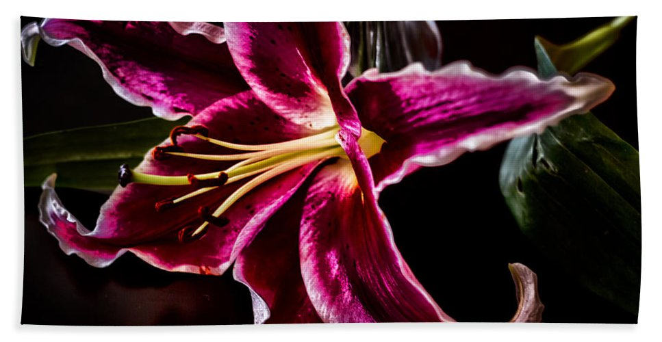 Lily Hand Towel featuring the photograph Radiating Romance by Linda Tiepelman