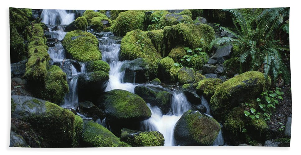 Rainforest Hand Towel featuring the photograph Rain Forest Stream by Sandra Bronstein