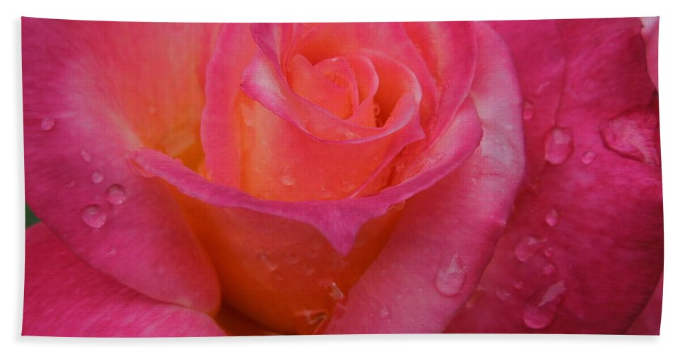 Flowers Hand Towel featuring the photograph Raindrops On Roses Ten by Diana Hatcher