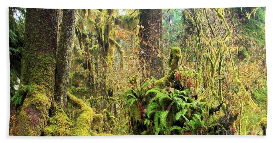 Hoh Rainforest Hand Towel featuring the photograph Rainforest Salad Bar by Adam Jewell