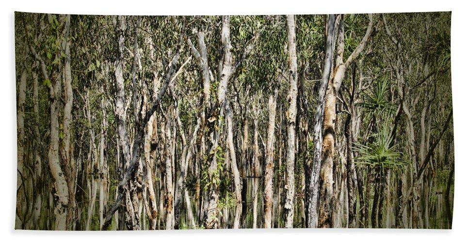 Trees Hand Towel featuring the photograph Rainy Season Reflections by Douglas Barnard