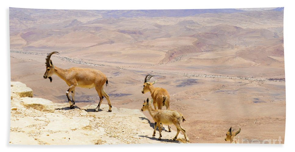 Ramon Hand Towel featuring the photograph Ramon Crater Negev Israel by Amir Paz