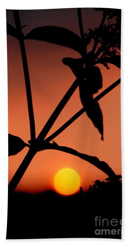 Sunset Bath Sheet featuring the photograph Raphael Sunset 1 by Mike Nellums