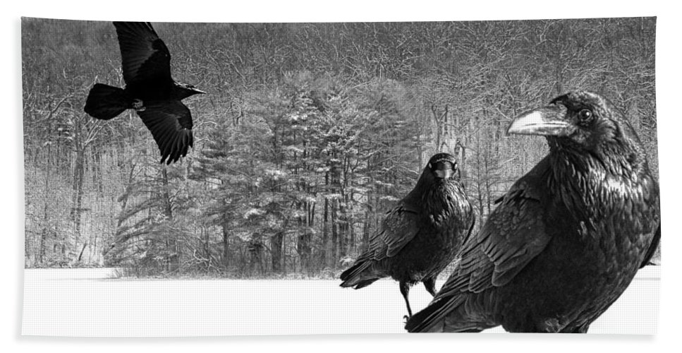 Art Bath Sheet featuring the photograph Ravens By A Woods by Randall Nyhof