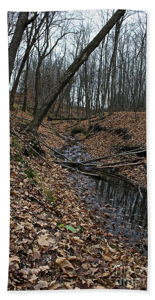 Outdoors Hand Towel featuring the photograph Ravine Creek by Susan Herber