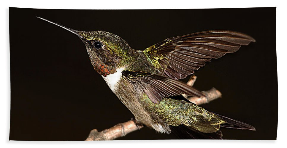 Hummer Hand Towel featuring the photograph Ready Set Go Hummer by Randall Branham