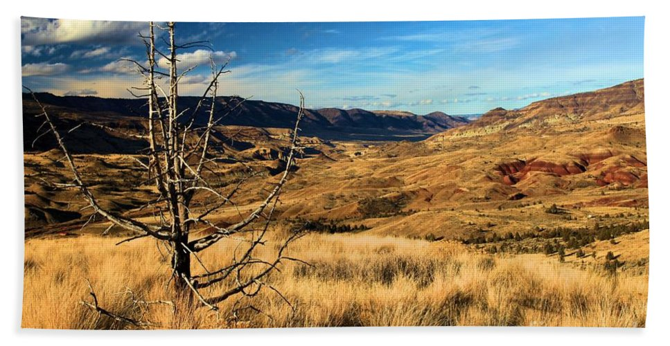 John Day Fossil Beds National Monument Hand Towel featuring the photograph Red And Gold by Adam Jewell