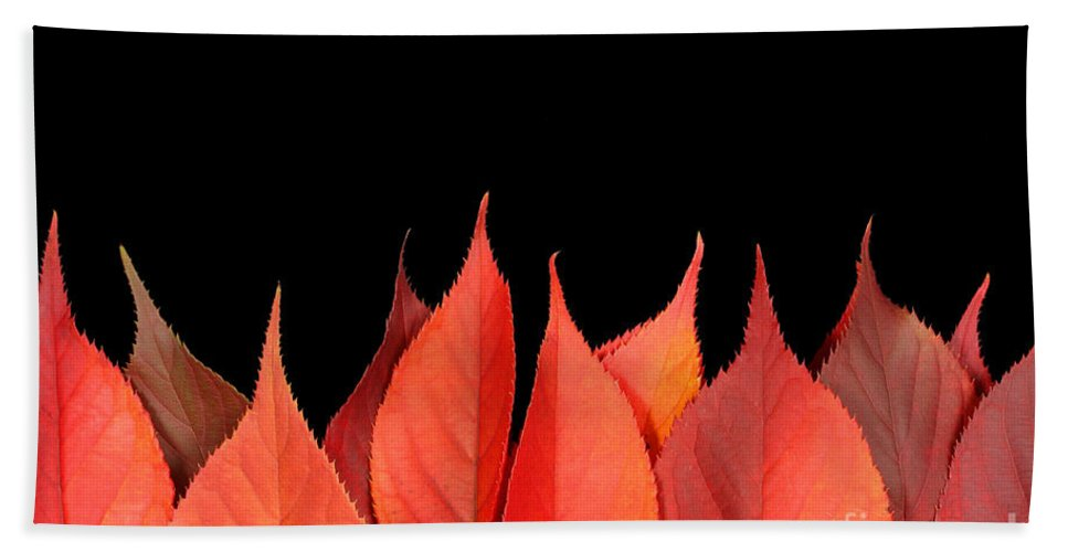 Flames Hand Towel featuring the photograph Red Autumn Leaves On Edge by Simon Bratt Photography LRPS