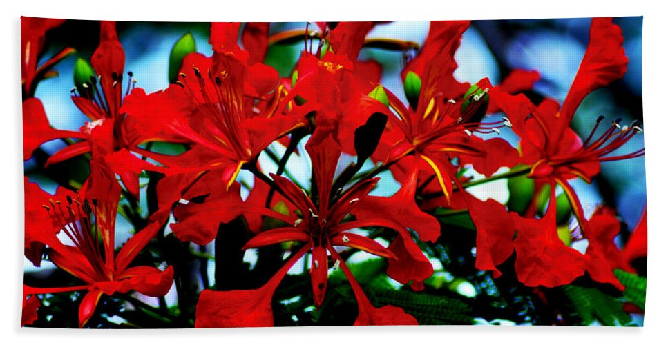 Red Beauty Bath Sheet featuring the photograph Red Beauty by Bill Cannon