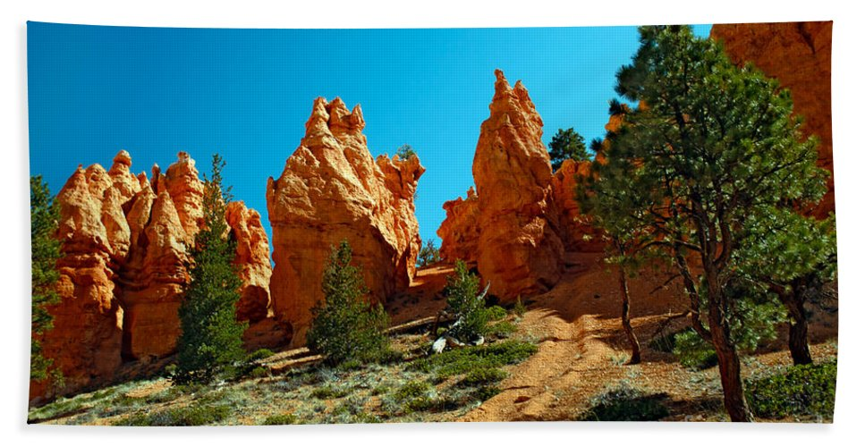Red Canyon Bath Sheet featuring the photograph Red Canyon Trail by Robert Bales