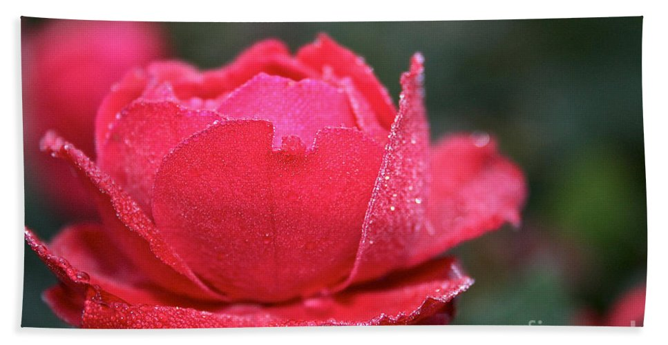 Flower Hand Towel featuring the photograph Red Crystal Petals by Susan Herber